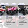 ATV electric 110cc